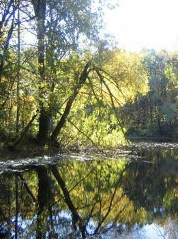 Озеро на горе Стрельная